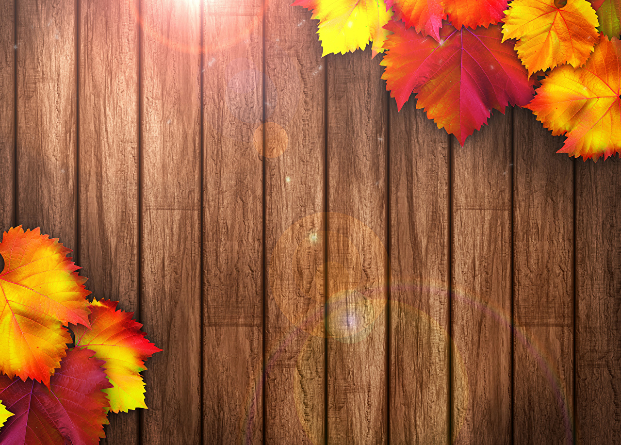 Autumn Leaves PowerPoint Backgrounds
