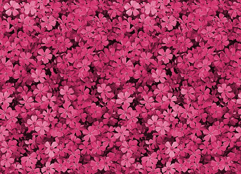 Pretty Pink Backgrounds Tumblr