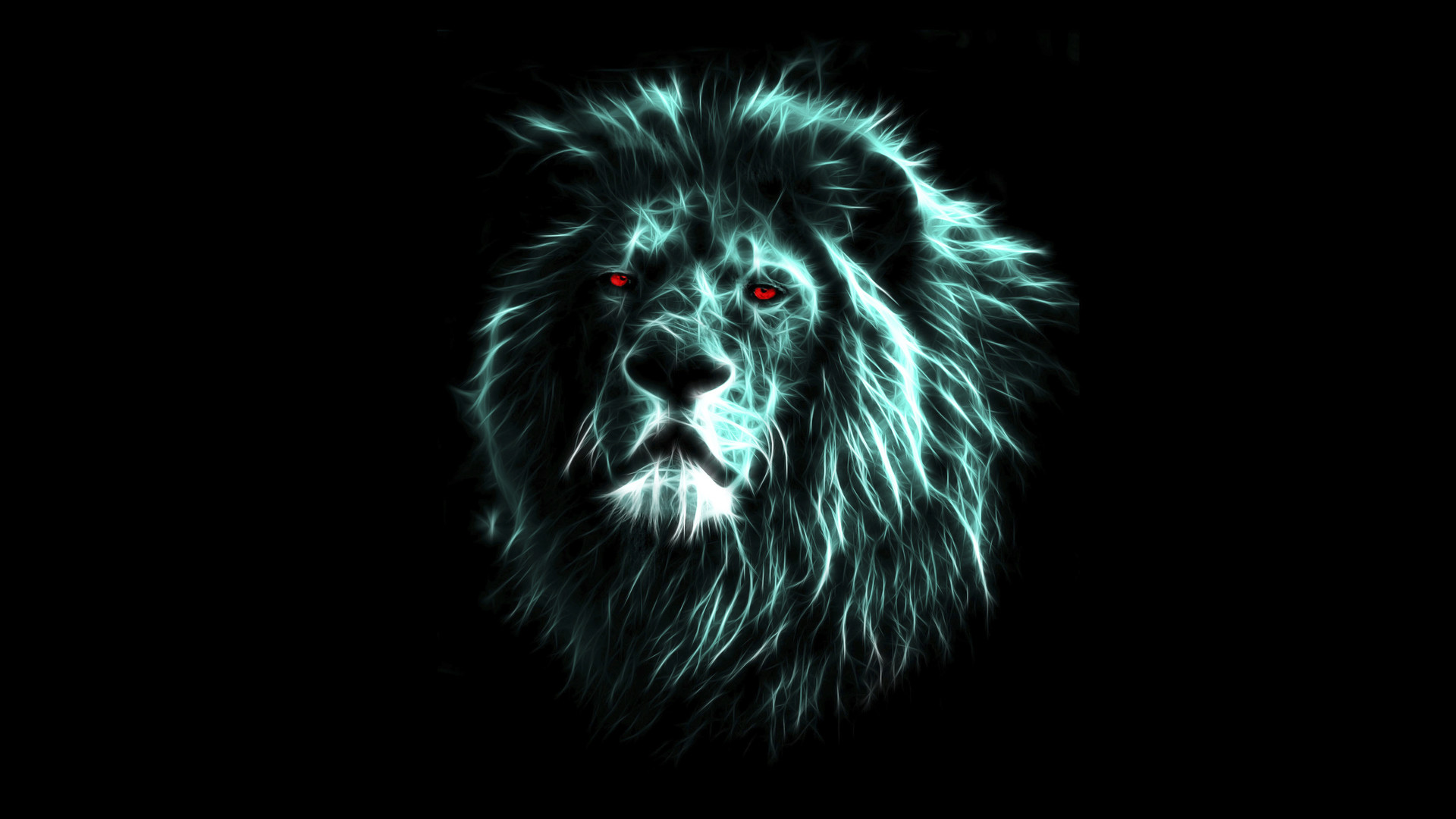 free download lion wallpapers 1920x1080 for hd WTG200414657