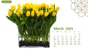 March Backgrounds Desktop 69+