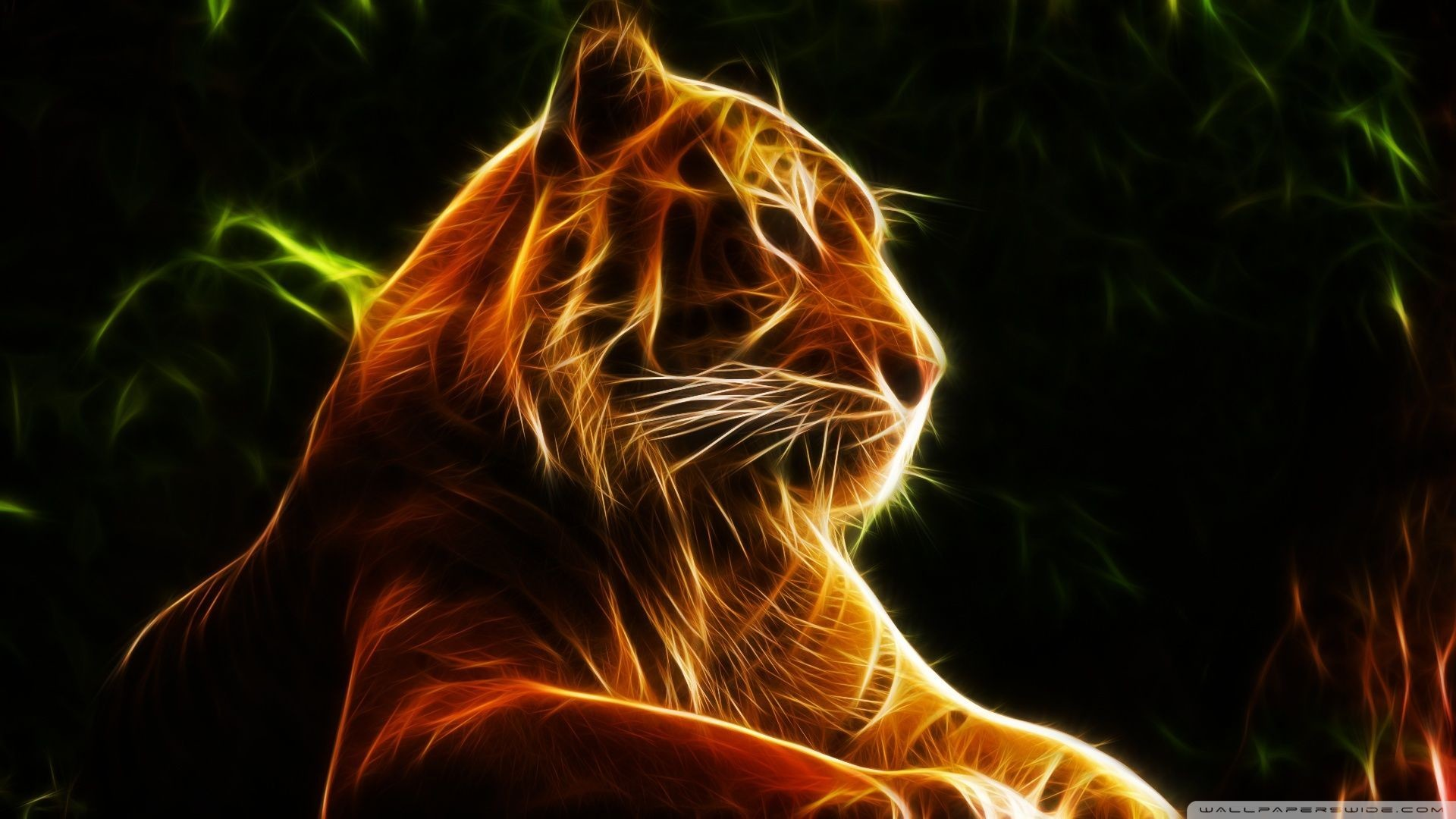 Cool Tiger Backgrounds 54+